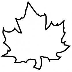Древесный лист