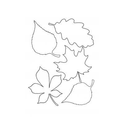 Шаблон лепестки цветов