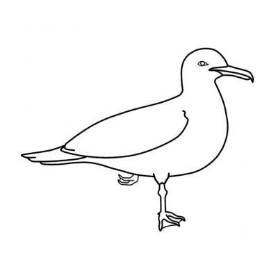 Шаблон птицы на стену