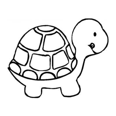 Замечательная черепаха