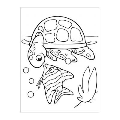 Черепаха ползет