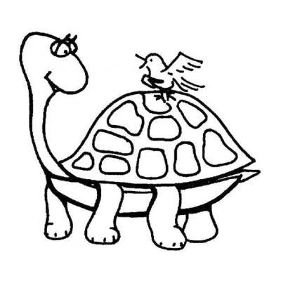 Черепаха - раскраска для детей