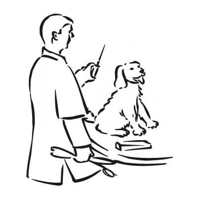 Ветеринар раскрасить