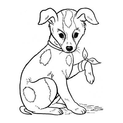 Раскраска Ветеринар
