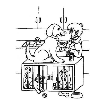 Лучшая работа Ветеринар