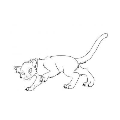 Коты Воители - раскраска для детей