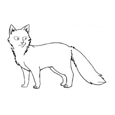 Коты Воители аниме