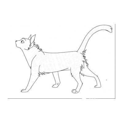 Раскраска Коты Воители
