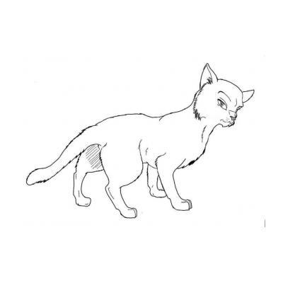 Кот Воитель