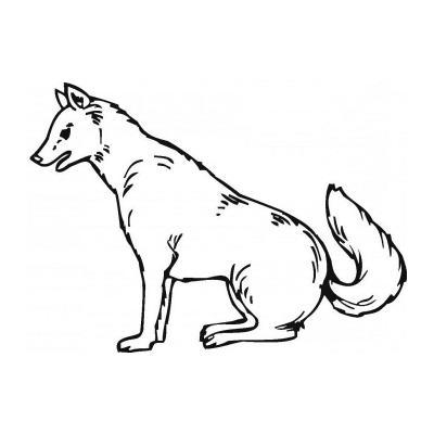 Грозный Волк