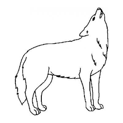 Красивый Волк