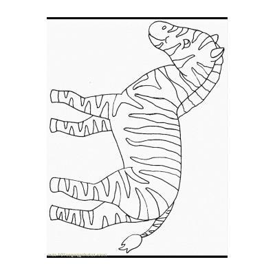 Зебра из Африки