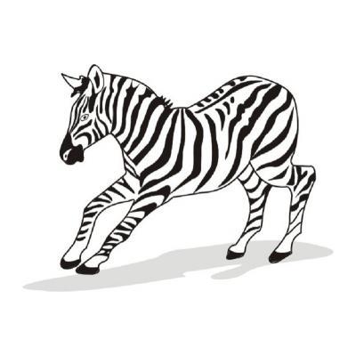 Зебра в полосочку