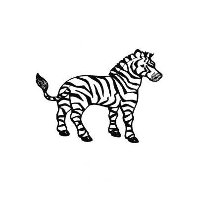 У Зебры красивые полоски