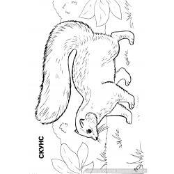 Раскраска Дикие Животные - распечатать, скачать бесплатно