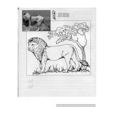 Раскраски животные в зоопарке - распечатать, скачать бесплатно